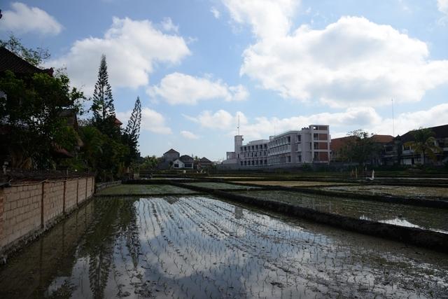 20151002_06.JPG