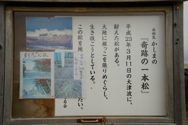 20160501_139.JPG