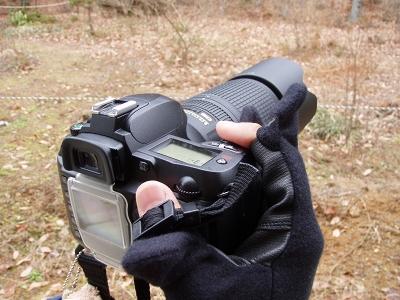 20070102_2.jpg
